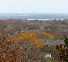 Autumn in Rhode Island   Tower Hill  by Jack McCabe