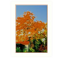 SoCal Autumn Art Print