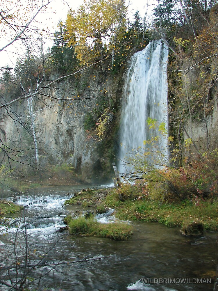 Spearfish Falls by WILDBRIMOWILDMAN