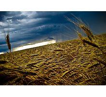 Harvest Storm Photographic Print