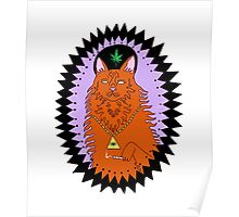 wavves cat Poster