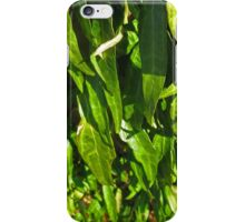 Leaf Cascade iPhone Case/Skin