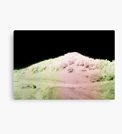 Landscape for Piet Mondrian #1 Canvas Print