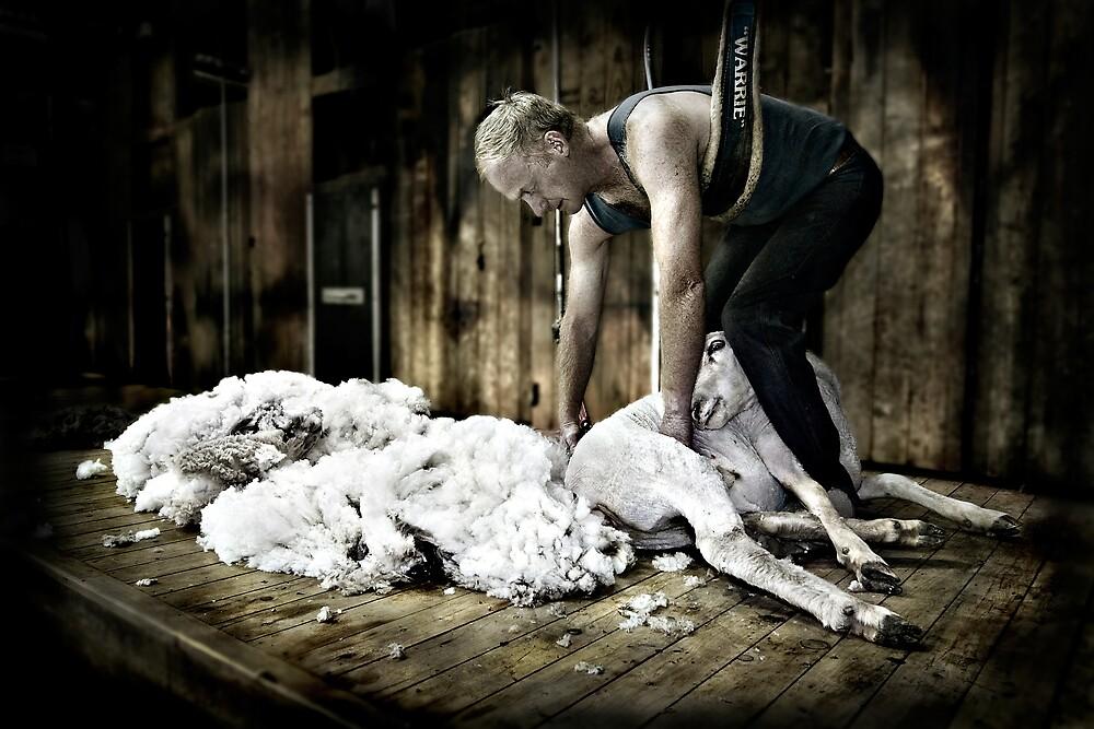The Shearer by Jenni Horsnell