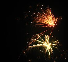 Firework by Pippa Carvell