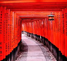 Through the Gates (Kyoto, Japan) by JulieMaxwell
