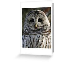 Noble Greeting Card