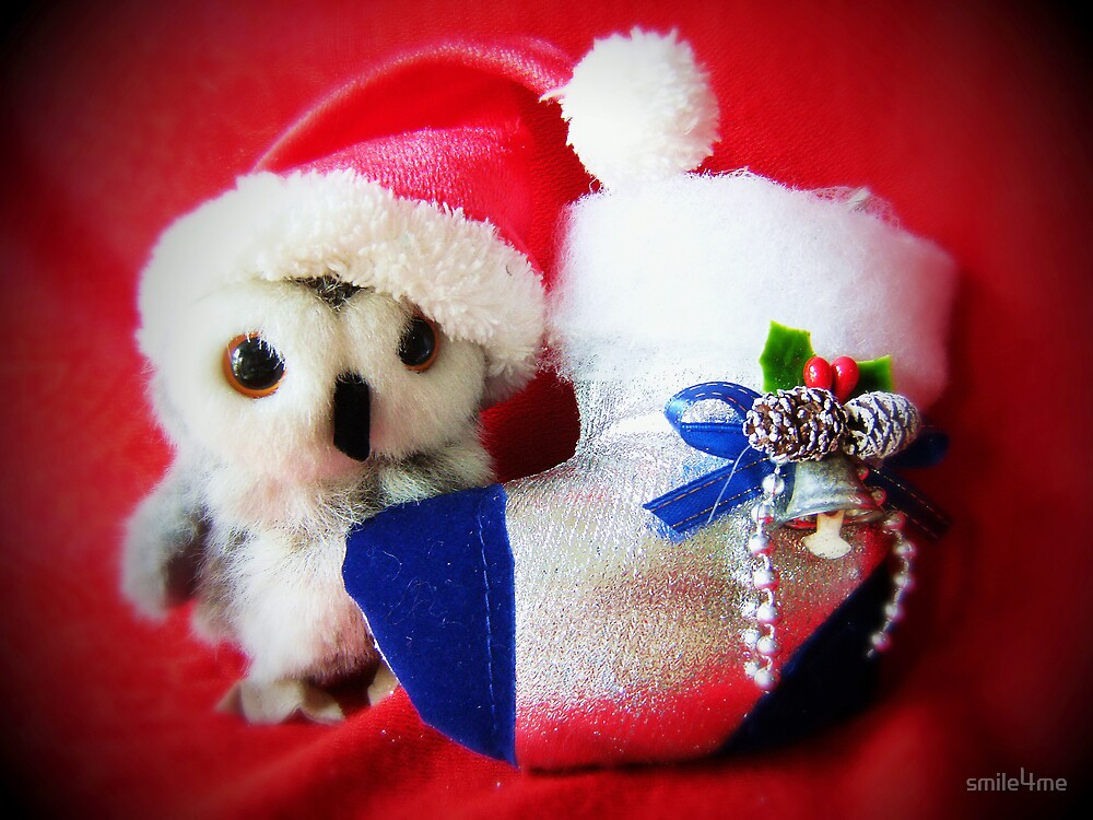 What I Want For Christmas.... by smile4me
