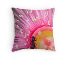 Gum ant Throw Pillow