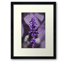 Victoria - textured Framed Print