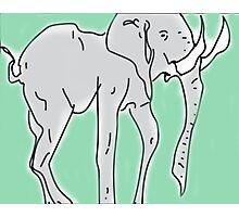 Artistic Elephant  Photographic Print