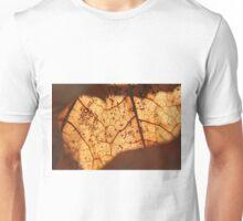 Veins of Leaves Unisex T-Shirt
