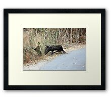 "Does this remind you of   ""Eeyore""? Framed Print"