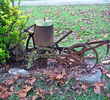 Antique Cultivator/Seed Spreader? by DottieDees