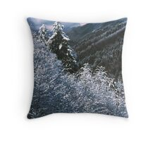 WINTER,NEWFOUND GAP Throw Pillow
