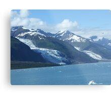 The Glaciers Metal Print