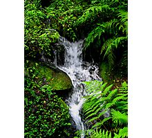 Small Mountain Stream Photographic Print
