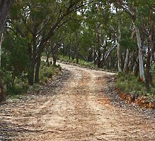 Country Road # 2 by Evita