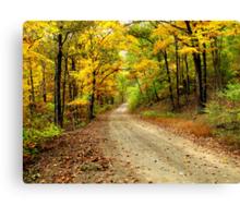 Golden Autumn Road Canvas Print
