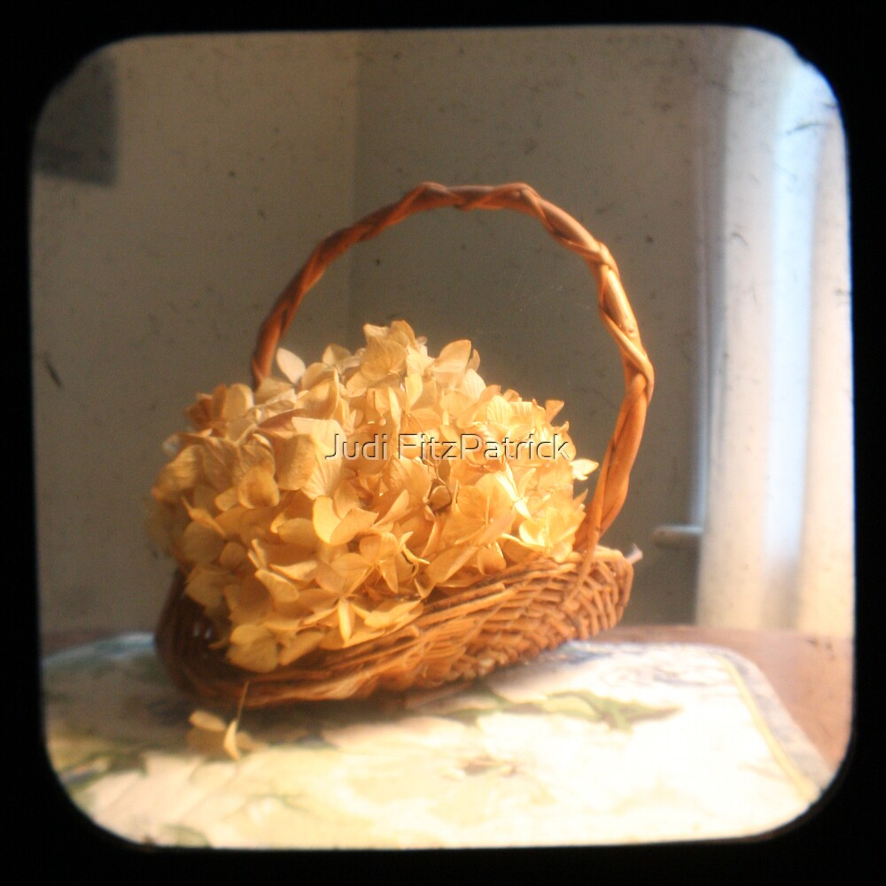 Hydrangea Basket TTV by Judi FitzPatrick
