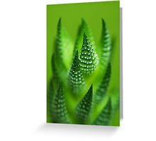 Fade to Green.  Greeting Card