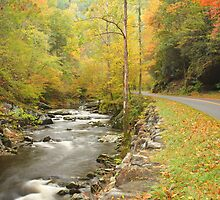Little River Road by Gary L   Suddath
