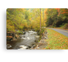 Little River Road Canvas Print