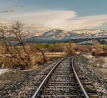 Curve in the Tracks by Sue Smith