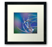 Bubblies.  Framed Print