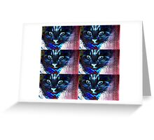Colour kitty Greeting Card