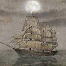 Night Journey  by Terry  Fan