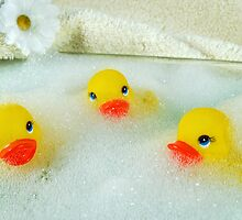 Bath Buddies by Maria Dryfhout