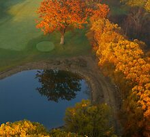 The 9th Tee in November..... by Larry Llewellyn