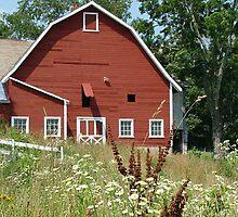Red Barn by Linda Marlowe