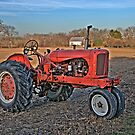 Allis Chalmers Tractor by Kate Adams