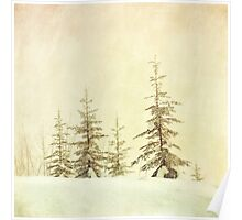 Winter's mist Poster