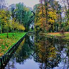AUTUMN REFLECTIONS   #  2 by Johan  Nijenhuis