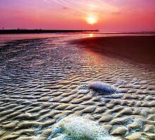Walberswick Beach Suffolk 5. by Wayne Bradshaw