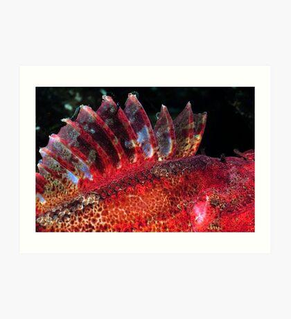 Fish Scape Art Print