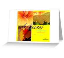 Hibiscus : Dictionary of an image  Greeting Card