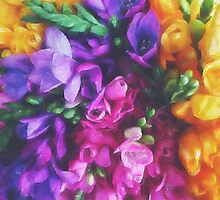 Freesias by Katayoonphotos