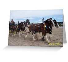 Clydesdales at the Parker Show Greeting Card
