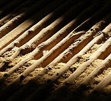 Shed floor by Rosie Appleton