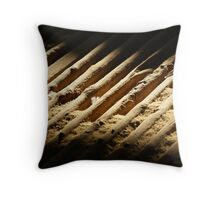 Shed floor Throw Pillow