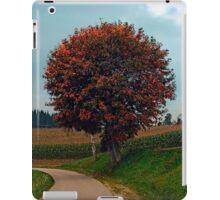 Blushing tree in shame | landscape photography iPad Case/Skin