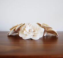 cream flowers by RachelMeszaros