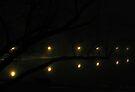 Tree Lanterns by wwyz