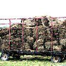 Hay Wagon in Mosaic by Tammy F