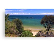 cerberus   Black Rock  Victoria Australia Canvas Print