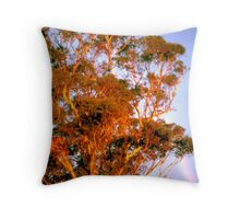 Last Rays at Fullerton Cove by Bernadette Smith Throw Pillow